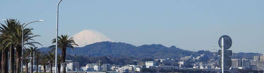 横須賀市民体育大会